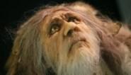 Waarom stukjes brein van de neanderthalers worden gekweekt