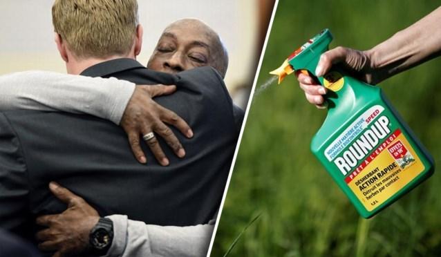 """Californische jury veroordeelt Monsanto: """"Roundup veroorzaakte kanker van tuinier"""""""