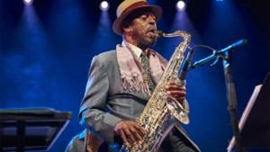 20.000 bezoekers voor 37ste Jazz Middelheim