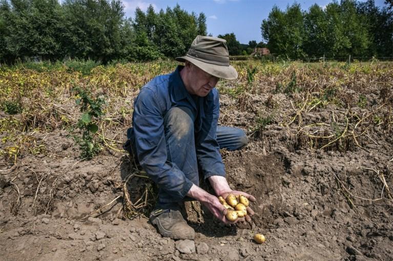 Tot midden september geen regen meer en de watervoorraden zijn nog niet aangevuld na de hete zomer