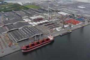 Loodsen staken: driekwart van trafiek Antwerpse haven geblokkeerd, 32 schepen wachten