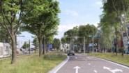 Laatste knoop voor Verapazbrug doorgehakt: bouw moet starten in 2020