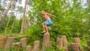 Het is de Week van het Bos: zo lok je jouw kinderen naar buiten