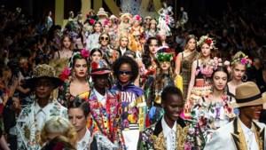 Plus-sizemodellen populair op de catwalk? Niet volgens de cijfers