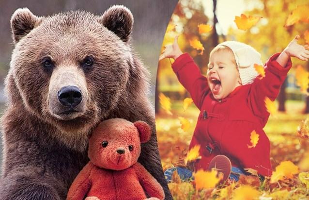 Daar is de herfstvakantie: de leukste uitstapjes met je kinderen op een rij