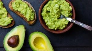 De keerzijde van de razend populaire avocado