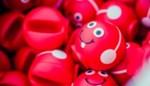 Scholen warmen zich op voor Rode Neuzen Dag