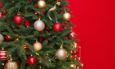 Waarom kost de ene kerstboom tien euro en de andere honderd? En welke soort laat echt geen naalden achter?