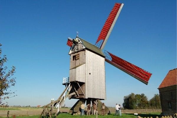 """Molenliefhebbers ongerust: """"Door de bouw van een nieuwe villa zal onze oude molen niet genoeg wind meer vangen"""""""