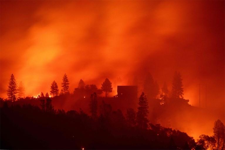 Bedrijf vraagt bescherming tegen schuldeisers na dodelijkste bosbranden ooit in Californië