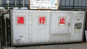 Is dit een Banksy? Tokio in de ban van graffititekening van rat die paraplu vasthoudt
