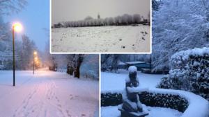LIVE. Tot 16 centimeter sneeuw in West-Vlaanderen, KMI schakelt terug naar code geel