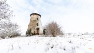 Vlaanderen wordt wakker onder wit tapijt: de mooiste foto's