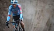 """Ex-crossers over carrière van Pauwels: """"Net onder de allergrootsten, maar wereldtitel ontbreekt"""""""