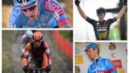 De mannen achter Mathieu van der Poel, Toon Aerts en Wout van Aert: hoe deden deze tien subtoppers het in 2018-2019?