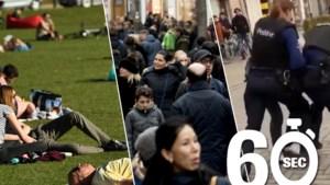 Mee in één minuut: warmste februari ooit, meer allochtone dan autochtone inwoners in Antwerpen en uit de hand gelopen arrestatie