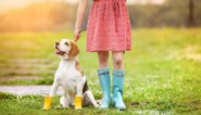 Zin om een lentejurkje te dragen? Met deze tips lukt het nu al