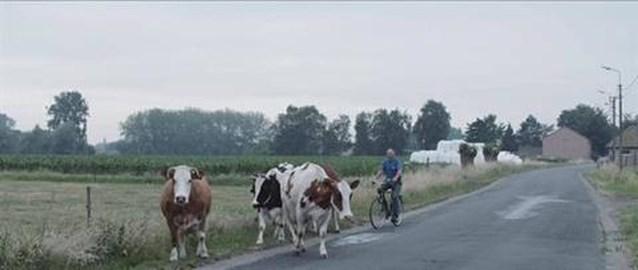 VIDEO. Film over landbouw in Oost-Vlaanderen in Poesele