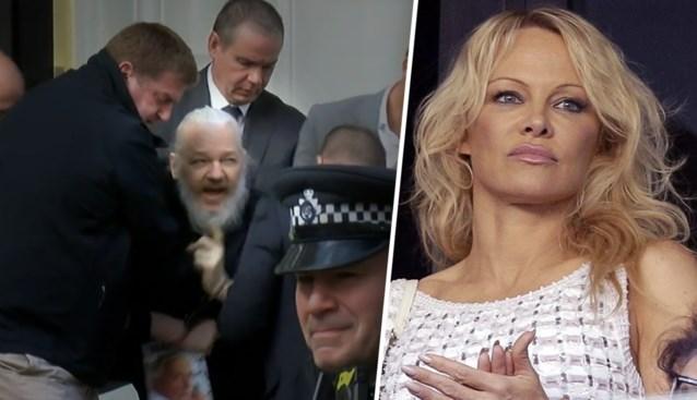 "Pamela Anderson woedend na arrestatie Assange: ""Hoe kon je, Ecuador?"""
