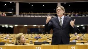 Hoe scoren Guy Verhofstadt en co? Bekijk hier het rapport van de Vlaamse Europarlementsleden