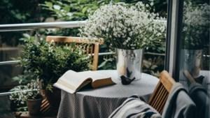 Met planten, lantaarns en een hangmat. Zo richt je een klein terras gezellig in