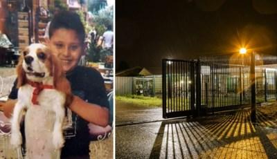"""Familie vermoorde Daniel (9) eist sluiting asielcentrum, verslagenheid is groot: """"Wat kan iemand tegen dat lieve jongetje hebben gehad?"""""""