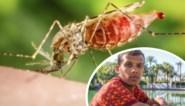 Malaria wereldwijd op de terugweg, maar niet in ons land: elke dag een nieuwe Belgische patiënt. Is dat de schuld van Stromae?