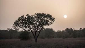 Frans leger bevrijdt vier gijzelaars in Burkina Faso, twee militairen omgekomen