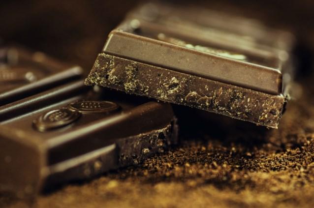 Vorig jaar 197 honden vergiftigd door chocolade in ons land