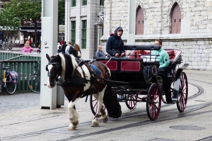 Protest Tegen Stopzetting Toeristische Paardenkoetsen