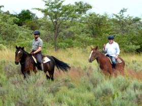 """Pieter gaf kantoorjob op en werd safarigids in Zuid-Afrika: """"De instagramtoeristen, dat zijn de gevaarlijkste"""""""