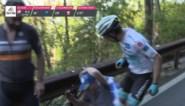 'Superman' Miguel Angel Lopez wordt van de fiets gelopen door Giro-toeschouwer en reageert met enkele rake klappen
