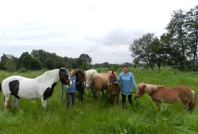 Zussen Hanne (35) en Lore (32) maken droom waar: therapie en yoga tussen paarden, ezels en kippen op boerderij van mama en papa