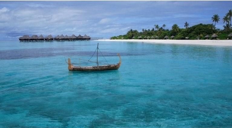 Zin in twee weken gratis Malediven? Je moet alleen wat op de schildpadjes letten