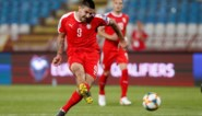 Daarom is Aleksandar Mitrovic de Romelu Lukaku van Servië