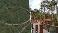 Nieuwe fiets- en wandelbeleving 'Fietsen door de Bomen' scheert hoge toppen in Limburg
