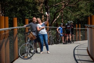 'Fietsen door de bomen' wordt 'File door de bomen': attractie lokt achtduizend bezoekers in eerste weekend