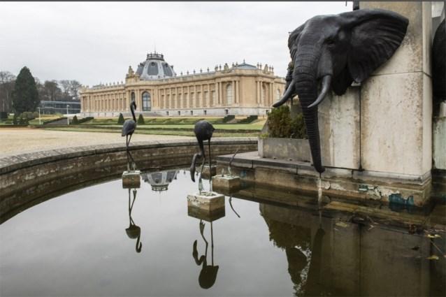 Gerenoveerd AfricaMuseum trekt sinds heropening vier keer zoveel bezoekers