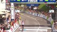 Diego Ulissi soleert naar zege in Ronde van Slovenië en wordt ook nieuwe leider