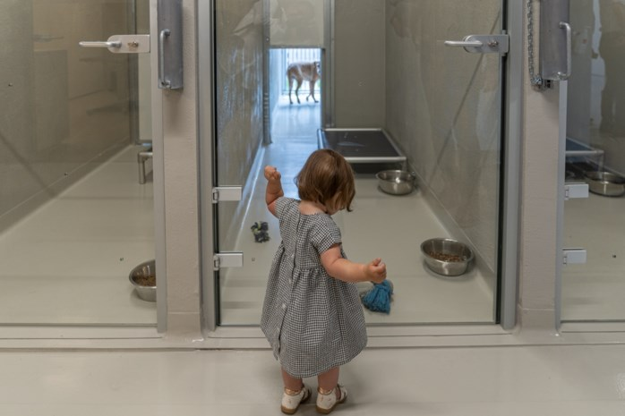 Modern dierenasiel eindelijk open, maar minister krijgt sneer
