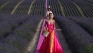 Is de mooiste catwalkshow van het seizoen al gelopen? Jacquemus verbluft in lavendelveld