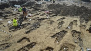Jobstudenten reageren massaal op oproep om skeletten te wassen in Sint-Truiden