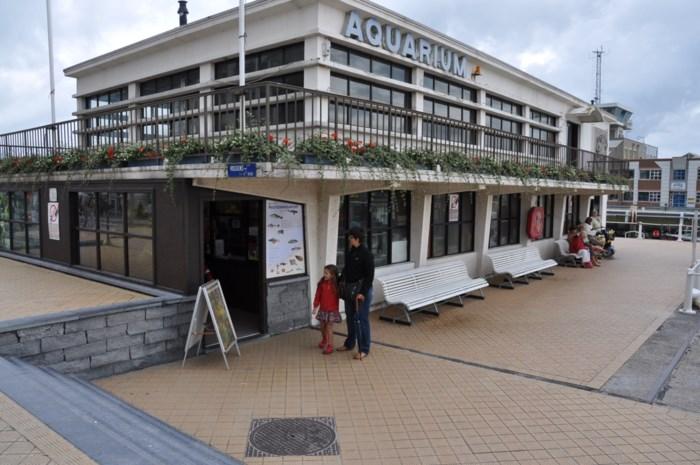 """Noordzee Aquarium sluit onmiddellijk de deuren: """"Het was niet meer van deze tijd"""""""