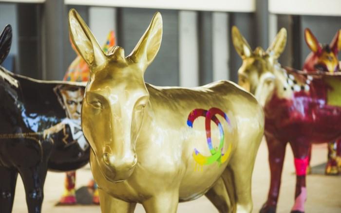 Kleurrijke Ezels Strijken Neer In Antwerpen Antwerpen