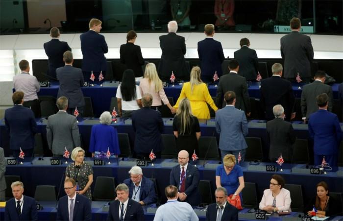 Van de man die gelooft in 'hagedismensen' tot de vrouwelijke Jeroen Meus: de vreemdste vogels van het Europees Parlement