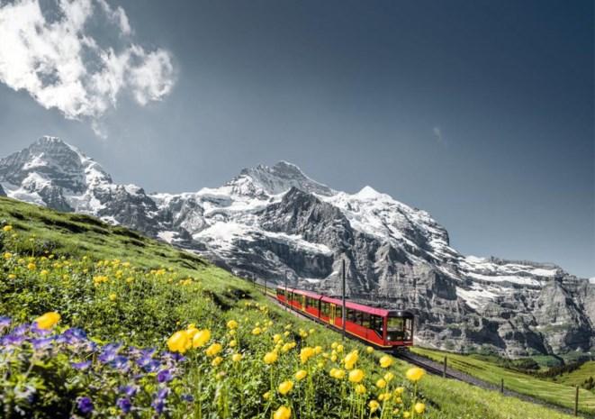 Doorheen Zwitserland Met De Trein En De Kinderen Het Nieuwsblad