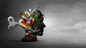 Hoge Gezondheidsraad wil weg van hokjesdenken in de psychiatrie