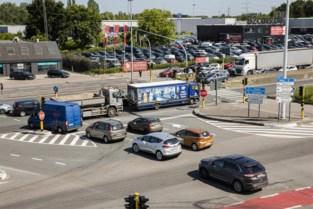 """KMO's langs A12 eisen terugkeer naar oude verkeerslichtenregeling: """"Kunnen niet nog half jaar leven met huidige toestand"""""""