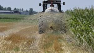 Al negen landbouwers riskeren zware boete omdat ze oppompverbod IJzerbekken geschonden hebben