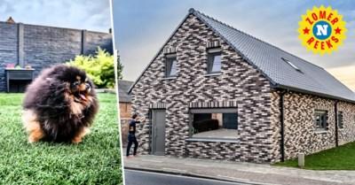 Een optische illusie in de stenen, maar achter de gevel is er nog meer te zien: dit huis telt liefst 37 bewoners